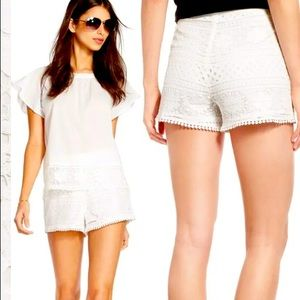 Cupcakes and Cashmere High Rise Lace Shorts Size 6